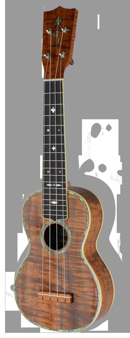 lorenzo lippi ukulele